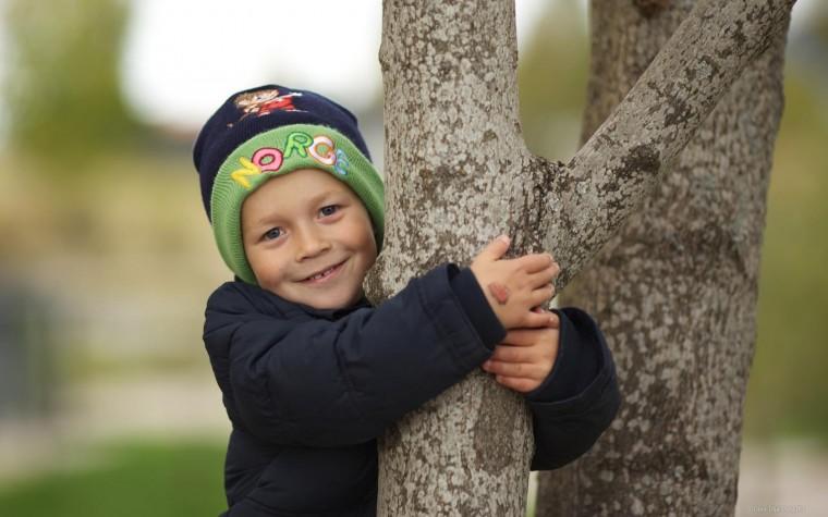 Мальчик-и-дерево